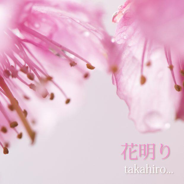 花明り_Fix